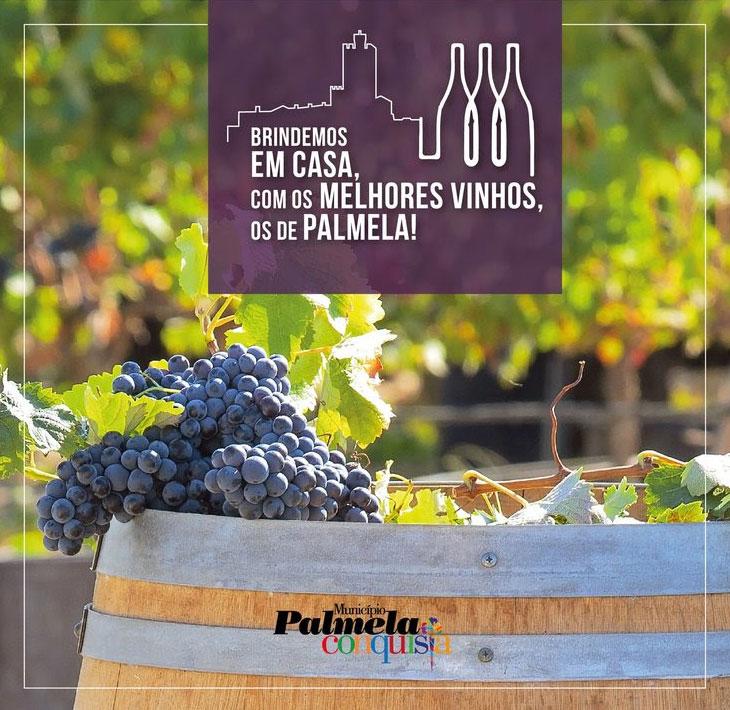 Brindemos em casa com os melhores vinhos, os de Palmela!