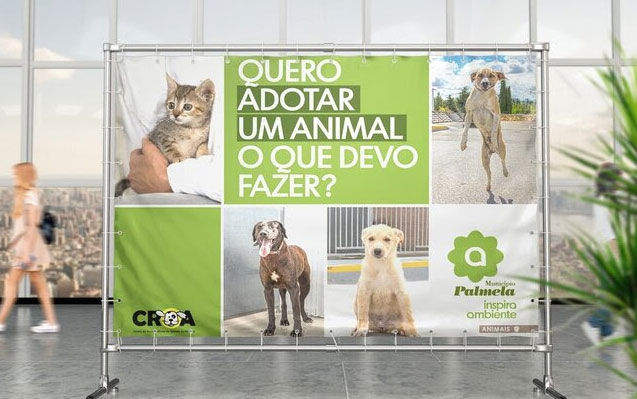 Adote um animal no CROA!