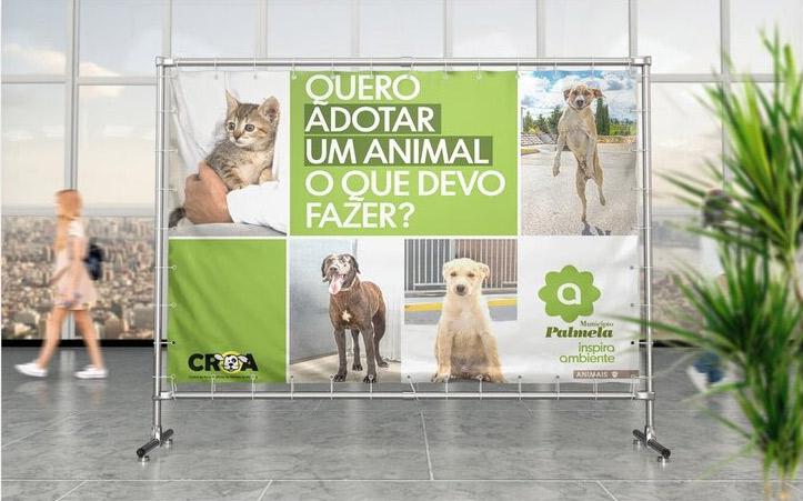 Adote um animal no CROA!