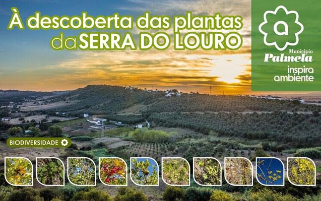 O Município de Palmela participa no Ecology Day que se comemora hoje!