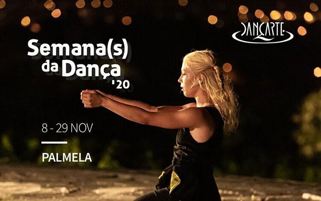 De 8 a 29 de novembro | Semana(s) da Dança com programa diversificado!